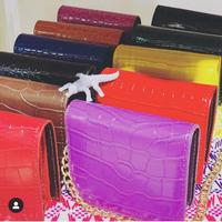 mini wallet bag w gold chain straps