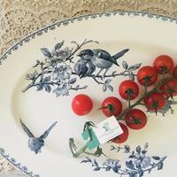 サルグミンヌ小鳥モチーフのオーバル皿(大)
