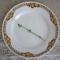 サンアマン窯オレンジ柄デザート皿B、D