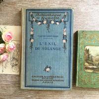 薔薇ガーランド柄のある水色ハードカバーの本