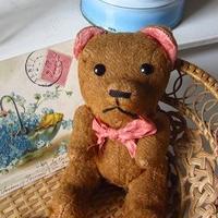 赤いリボン生真面目顔の熊さん
