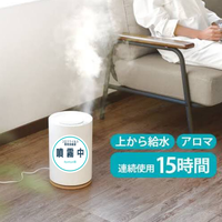 「レンタル」コロナウイルス専用消毒噴霧器#19