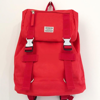 ARCH&LINE UTILITY BAG (RED)