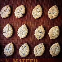 チョコミントクッキー