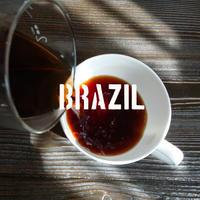 ブラジル グアリロバ農園 トパージオ 浅煎り 100g