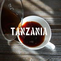 タンザニア ハニー スイート サバンナ 浅煎り 100g
