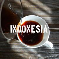 インドネシア マンデリン スーパーグレード シボルガ 100g