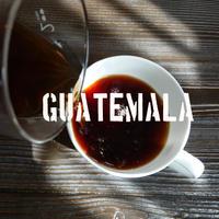 グァテマラ サンタ クララ 100g
