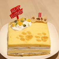 わんちゃん用 こめこわんこ バースディケーキ 12cm
