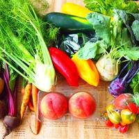 栄養カウンセリング 〜 体質改善のための栄養・食事療法をご提案
