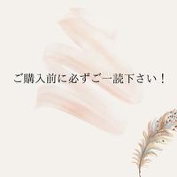こちらの欄は必ずご一読下さい!!!
