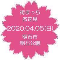 2020.04.05(日) 街まっち お花見ピクニック@明石市 明石公園 桜を見ながら婚活恋活しましょ。