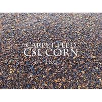 EUROCARP  CSL CORN カーペットフィード 1kg