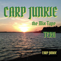 TERU    「CARP JUNKIE  the mix tape」