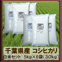 平成30年 千葉県産 コシヒカリ  白米セット(5kg×6袋)30kg