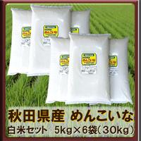 平成30年 秋田県産 めんこいな 白米セット(5kg×6袋)30kg