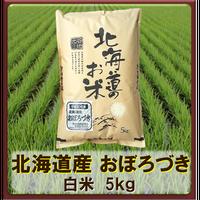 平成30年 北海道産 おぼろづき  白米 5kg