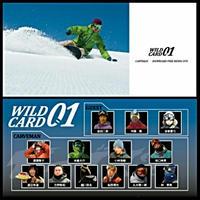 DVD 【 WILD CARD #01 】