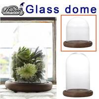 DULTON ダルトン GLASS DOME XXSサイズ 発根管理 温室 コーデックス アガベ