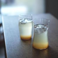 エルダーフラワー&ジンジャー&レモンのシロップ(130g)/山フーズ