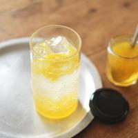 熊本県産河内晩柑とエルダーフラワーのコーディアルシロップ(200g)/山フーズ