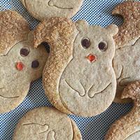 pieni kuppe りすクッキー(常温でお届け)