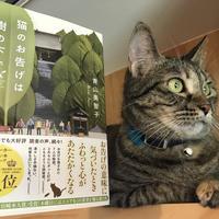 【直筆サイン入り】猫のお告げは樹の下で(文庫版)