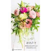 季節のおうちブーケM (OUB-002)