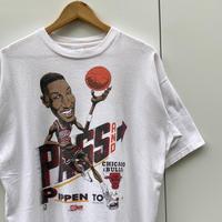 SALEM BULLS PIPPEN JORDAN/セーラム ブルズ ピッペン ジョーダン Tシャツ 90年前後 Made In USA (USED)