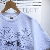 FTC x DC SHOE/エフティーシーxディーシーシュー コラボ Tシャツ 2006年 Made In USA (DEADSTOCK)