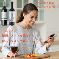 プロが語る動画だからこそ面白い!ソムリエの動画コメントを観ながら味わうワイン2本セット(A)