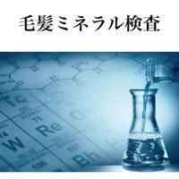 毛髪ミネラル検査(ら・べるびぃ)