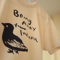 鳥 Tシャツ(being away from indiana)