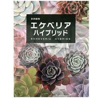 書籍 多肉植物エケベリアハイブリッド