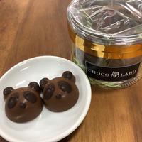 【新商品‼】ショコラdeパンダ  ノワール
