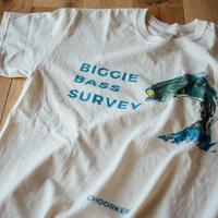 BIGGIE BASS SURVEY
