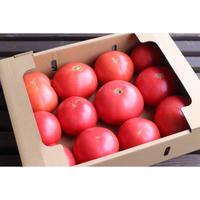 Wonky Tomato Box (ウォンキートマトボックス) 3kg詰め