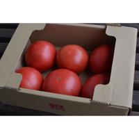 完熟大玉トマト