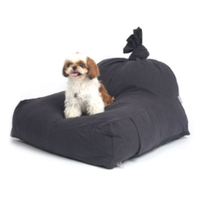 The Beanbag Cushion
