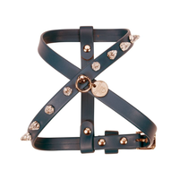 Art g1485N harness Jay