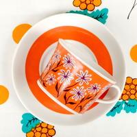 ロールストランド Rorstrand パルマ カップ&ソーサー(a) オレンジ