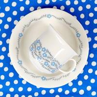 ARABIA アラビア アークティカ(ロゼッタ)コーヒーカップ&ソーサー 水色