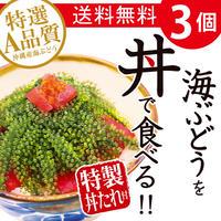 海ぶどうを丼で食べる!! 3個 お試しセット 送料無料 コロナに負けるな 応援 沖縄県産 お土産 食品ロス
