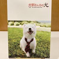 「犬飼さんちの犬」パンフレット