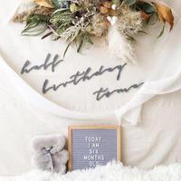 half birthday set(color grey / taupe/ moss)