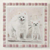 ブライトカラー/オーキッド(XL)◆Tile Picture Frame(XL)/Bright Tone/ORCHID◆