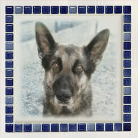 ブライトカラー/インディゴブルー(XL)【見本】◆Tile Picture Frame(XL)/Bright Tone/INDIGO  BLUE◆