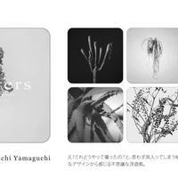 CoasterBook~flowers~