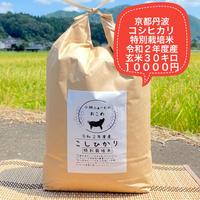 玄米 30キロ 京都丹波コシヒカリ 令和2年度産 特別栽培米