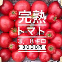 完熟トマト3.8キロ 3000円